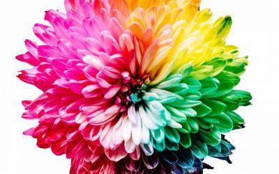 RGB vs. CMYK vs. Pantone Colors