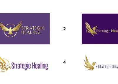 Strategic Healing - Eagle Concept 1-4