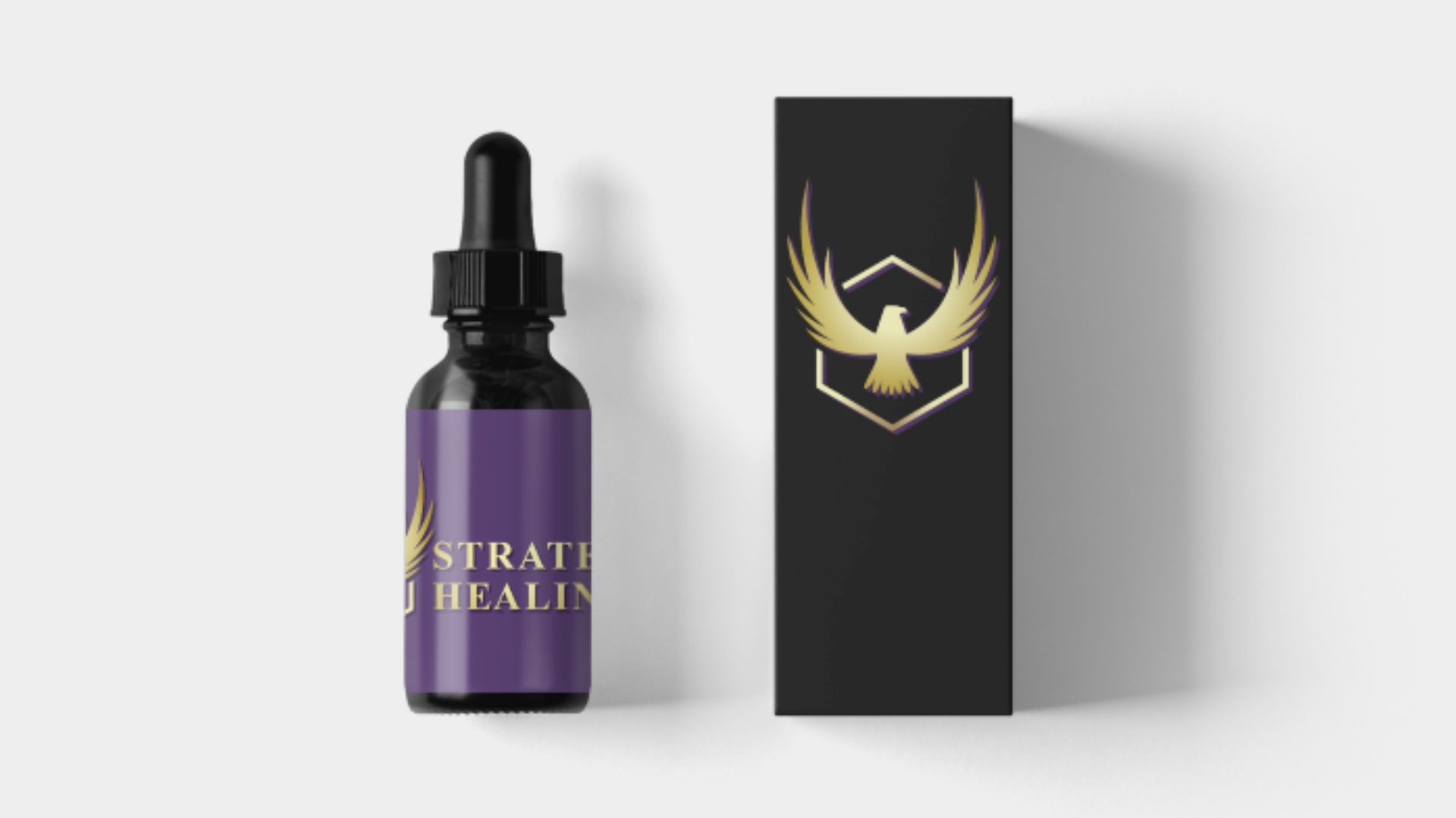 Strategic Healing - Eagle Logo Mockup 02