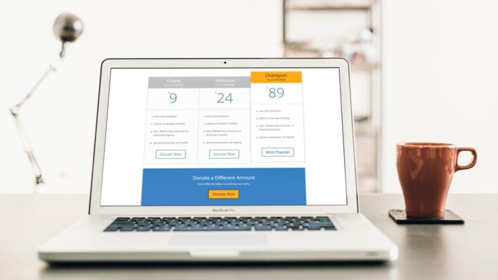 Thaar Care Foundation Inc. - Website Mockup (3)